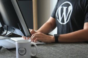 What is WordPress and how can I benefit from it?
